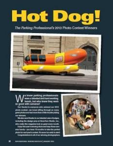 TPP-2014-01-Hot Dog!